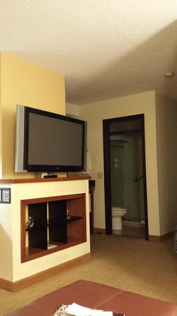 Hyatt Place Nashville/Opryland: great room
