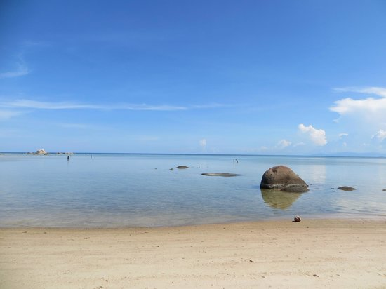 Renaissance Koh Samui Resort & Spa: One foot deep, or less, as far as the eye can see