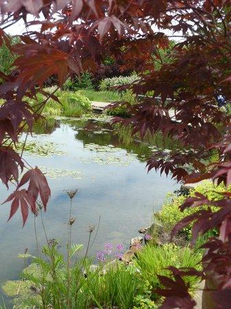 Oregon Garden Resort: Garden