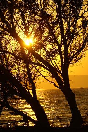Medusa Resort: Sonnenuntergang im Garten des Medusa