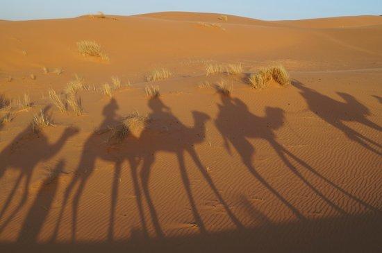 Auberge le Petit Prince: En route pour le bivouac!