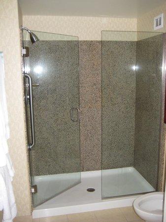 Residence Inn Long Beach Downtown: Granite and Glass shower