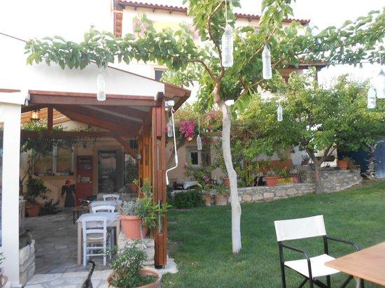 Taverna Kipos Garden : Taverna Kipos in May