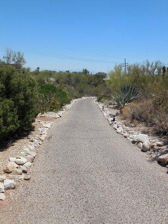 Westward Look Wyndham Grand Resort and Spa: Desert Walk