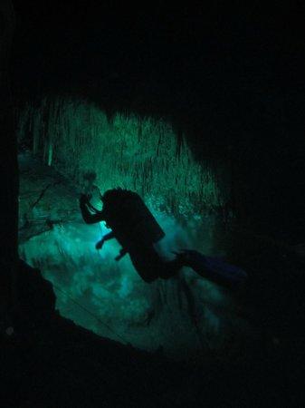 Phocea Mexico: Cenotes