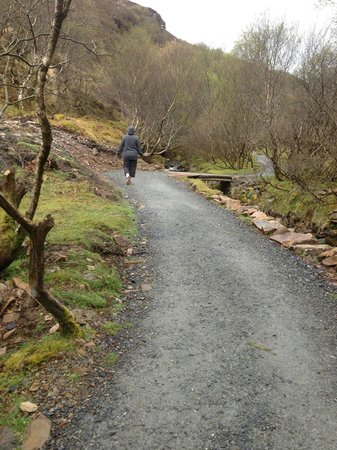 walk to the waterfall behind The Glen House
