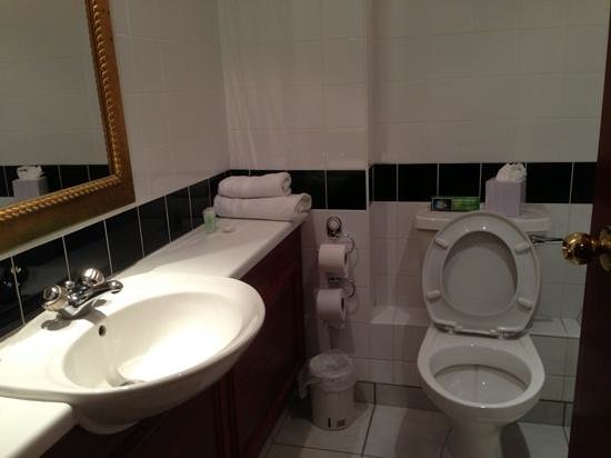 Royal Court Hotel - Coventry: The bathroom