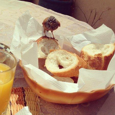 Riad Dubai: Breakfast guest.