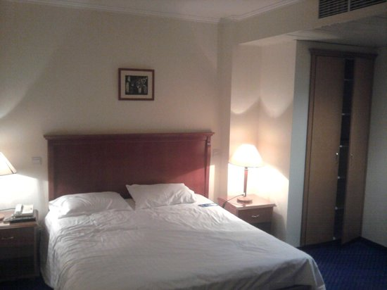 Castelli Hotel: The room