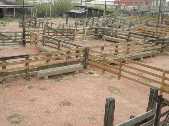 The Old Holding Pens For Cattle Picture Of Ft Worth