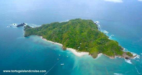 Картинки острова тортуга