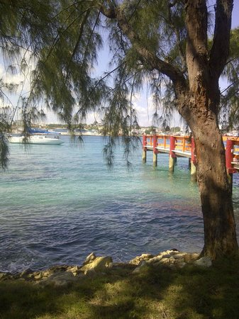 Sivananda Ashram Yoga Retreat : Ashram view to Nassau Harbour