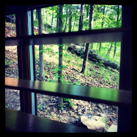 Devil's Den State Park: Beautiful views fromt the cabin