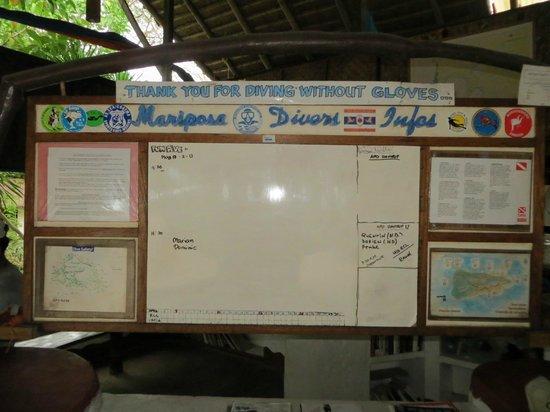 Apo Reef Natural Park : Mariposa diving center @ Pandan Island