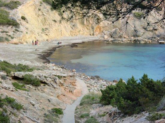 CLUB CALIMERA Delfin Playa: Strandbucht unmittelbar an der Hotelanlage