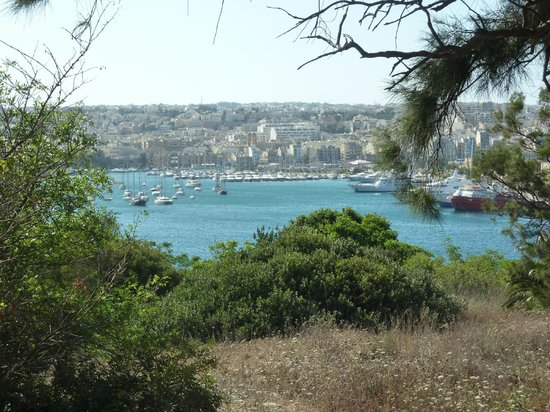 Hotel Phoenicia: View from the gardens near the pool
