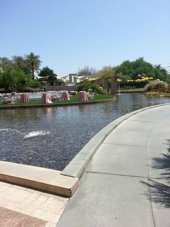 JW Marriott Phoenix Desert Ridge Resort & Spa: grounds