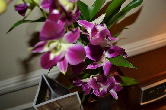 Raffles Grand Hotel d'Angkor: Fresh orchids