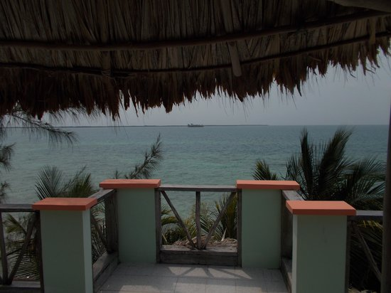 Thatch Caye, a Muy'Ono Resort: view from the roof top hammocks