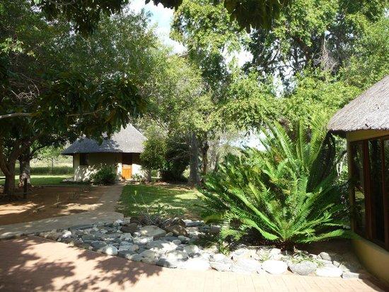Nyala Safari Lodge: the garden