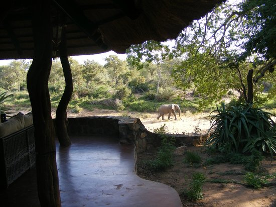 Nyala Safari Lodge: view from the terrace of the dining room
