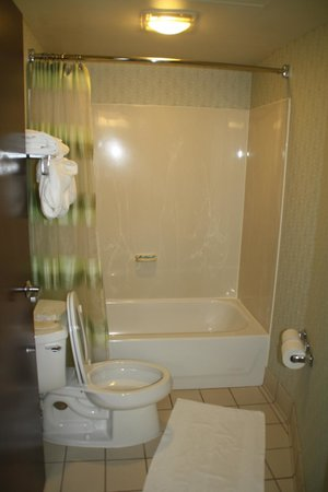 SpringHill Suites Seattle Downtown/South Lake Union: Bathroom