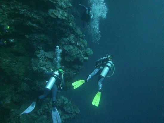 Agnes Lodge: Diving with Dive Munda