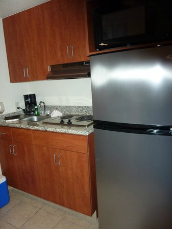 Garden Place Suites: Full sized refrigerator, 2 burner electric stove and small sink in kitchenette.