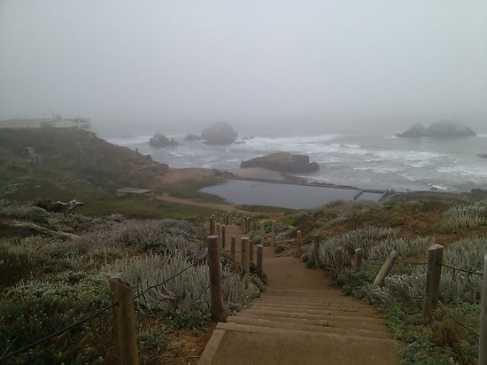 Seal Rock Inn : Across the road leading down to the old Sutro bath house area