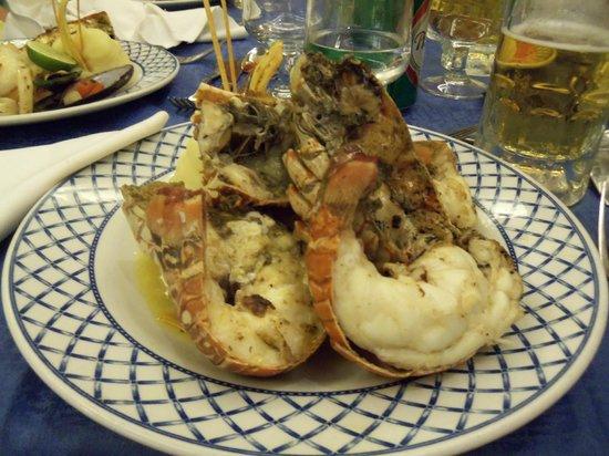 Barcelo Bavaro Beach - Adults Only: lobster dinner