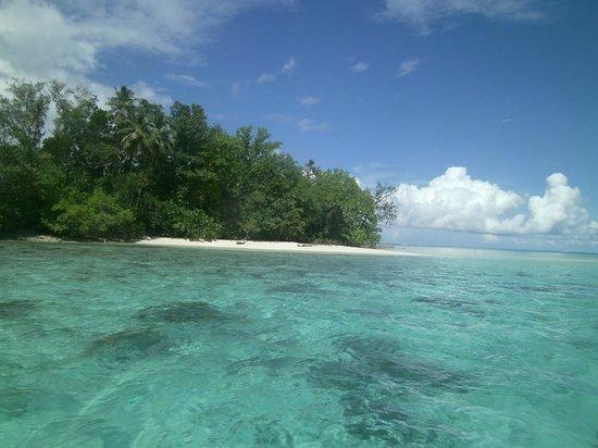 Dive Munda : tropical island