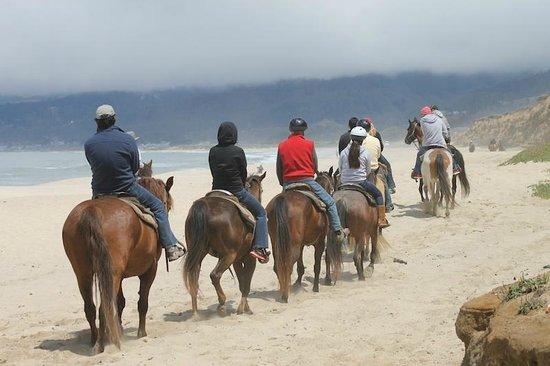 Sea Horse Ranch: Half Moon Bay beach ride