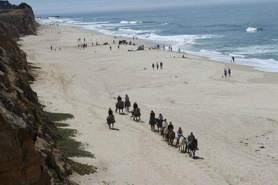 Sea Horse Ranch: Our group at Half Moon Bay