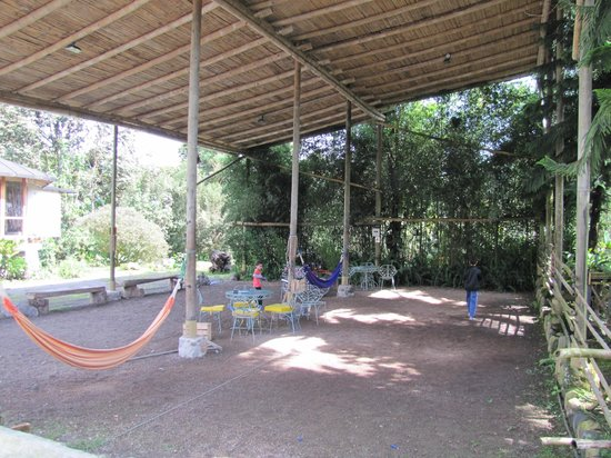 Hostería La Roulotte: Coverd Play area is a useful asset for the rainy cloud forest climate