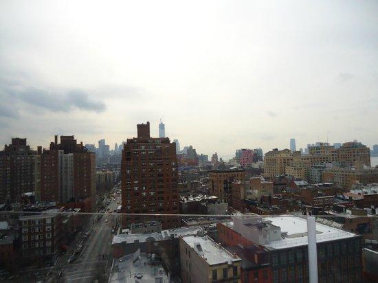 Gansevoort Meatpacking NYC: Rooftop views