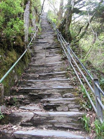 Devil's Bridge Falls照片