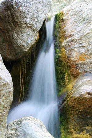 Sunol Regional Wilderness: Little Yosemite Waterfall