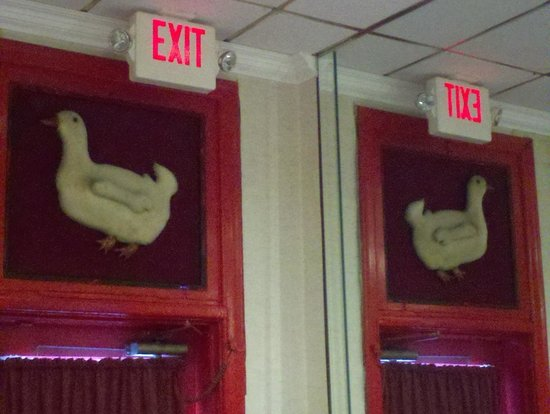 Peking Gourmet Inn : The Duck
