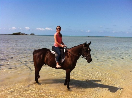 Happy Trails Stables, Windsor Equestrian Centre : Enjoying the ocean!