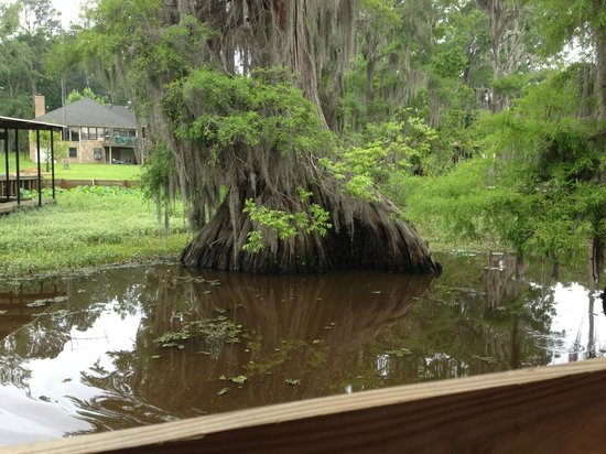 Graceful Ghost Steamboat: A beautiful relic on Caddo Lake