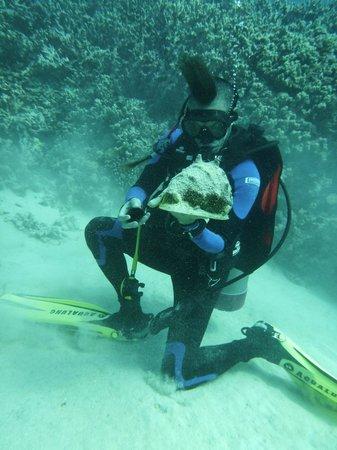 Waikoloa Coast Divers: Wesley!