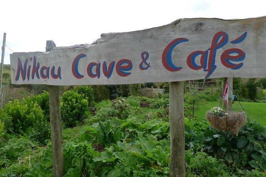Nikau Cave Cafe : Nikau Cave & Cafe