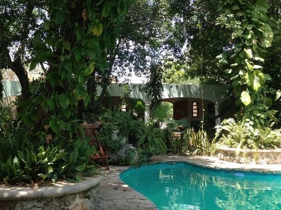 Casa Quetzal: pool and garden