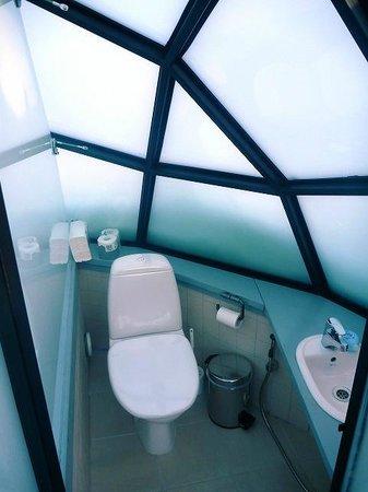 Kakslauttanen Arctic Resort: 【室内】 トイレと洗面台:有り、シャワー:無し