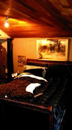 The Stone Hedge Bed and Breakfast: Safari room