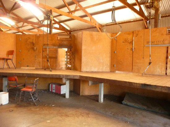 Southern Flinders Ranges Experience with Lunch: The old shearing shed at Spear Creek Station