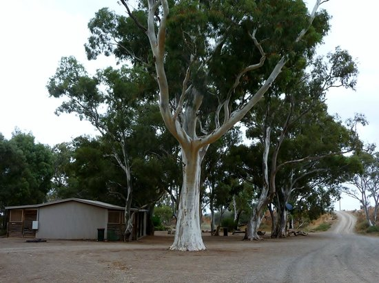 Southern Flinders Ranges Experience with Lunch: The Spear Creek Station Caravan Park