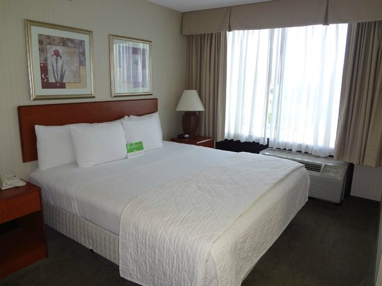 La Quinta Inn & Suites Newark - Elkton: Nice sleeping area with big window - comfy bed