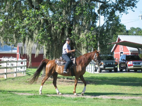 Horse World Riding Stables - Private Rides