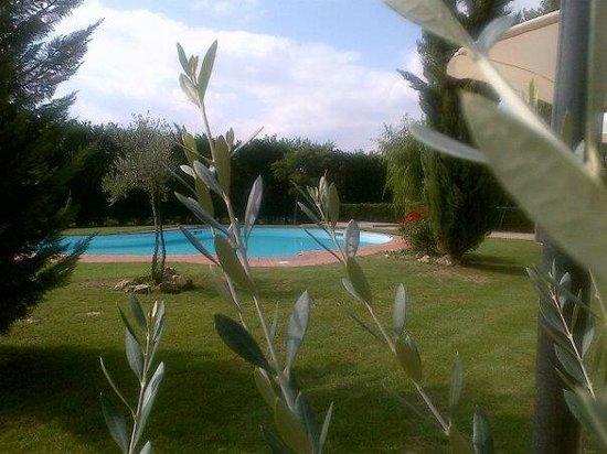 Agriturismo Podere Raffaello: piscina